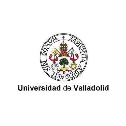 Cliente Imagesa21 Universidad de Valladolid
